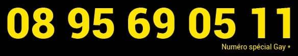 Numéro de téléphone rose gay